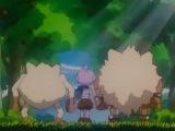 Покемон: Путь Мастера / Pokemon: Master Quest - 5 сезон 24 серия [235] (Озвучка)